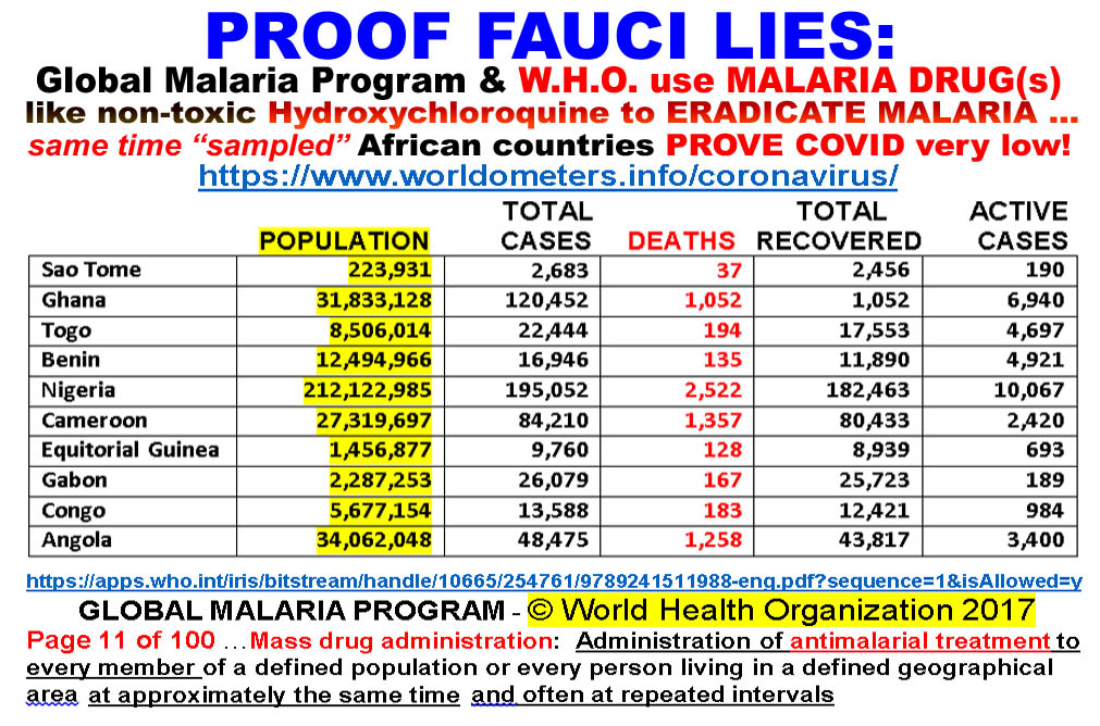 PROOF FAUCI lies ABOUT USE OF HYDROXY - AFRICA MALARIA PROGRAM PROVES LOW COVID and ERADICATIN...jpg